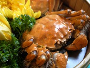 清蒸大闸蟹:最有营养的螃蟹吃法